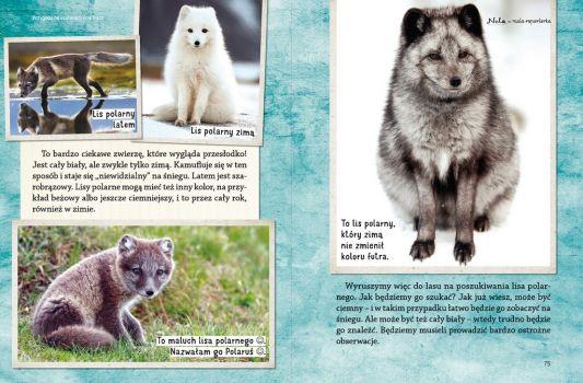 Nela I Polarne Zwierzęta Tvp Abc
