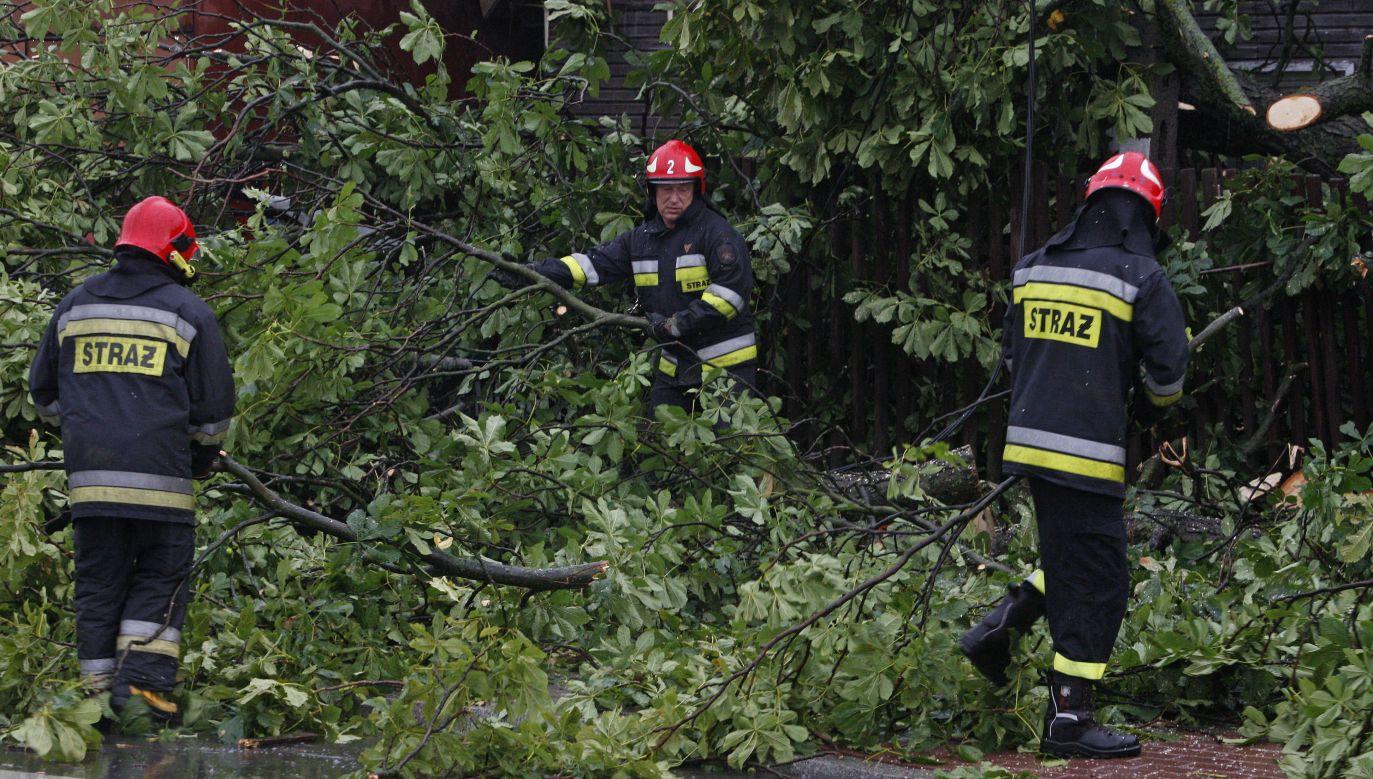 Strażacy usuwali także wodę z zalanych posesji i udrażniali zatkane przepusty (fot. PAP/Artur Reszko)
