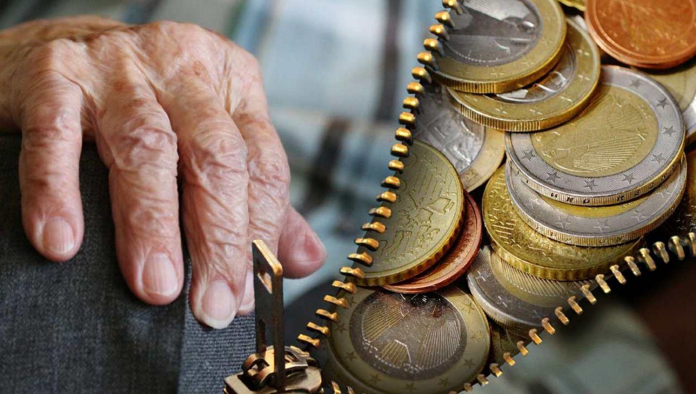 Wsparcie finansowe (Fot. Alexandra ❤️A life without animals is not worth living❤️ z Pixabay)