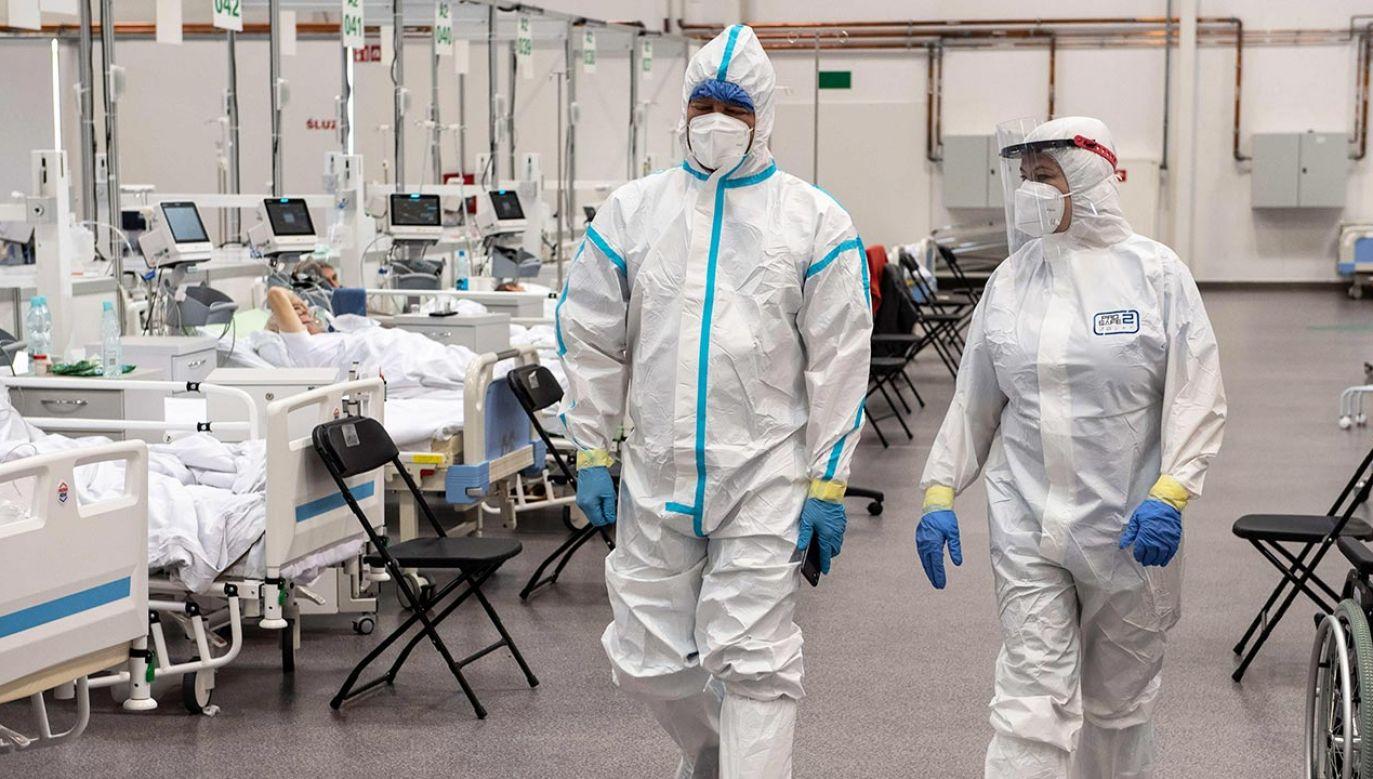 Nowe dane o zakażeniach koronawirusem – sobota 23.10.2021 (fot.  PAP/Wojtek Jargiło)