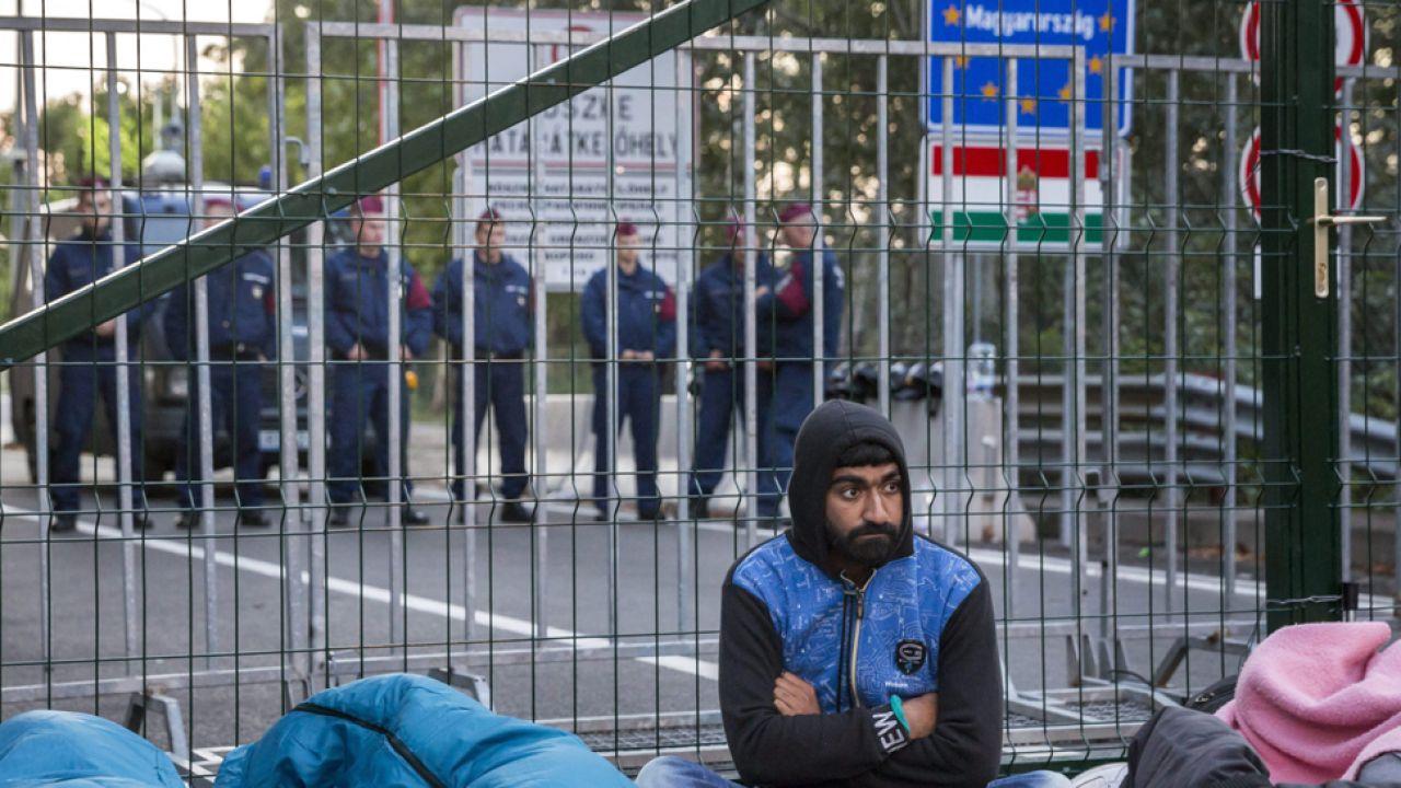 Uchodźcy na węgierskiej granicy ( fot. PAP/EPA/BALAZS MOHAI)