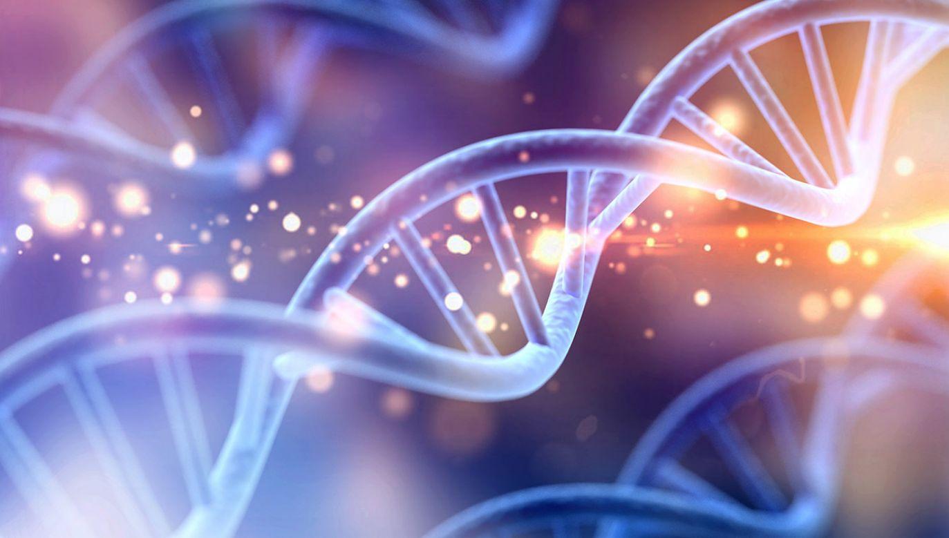 Trzeba wiedzieć, że rak wynika z mutacji w DNA (fot. Shutterstock/Billion Photos)