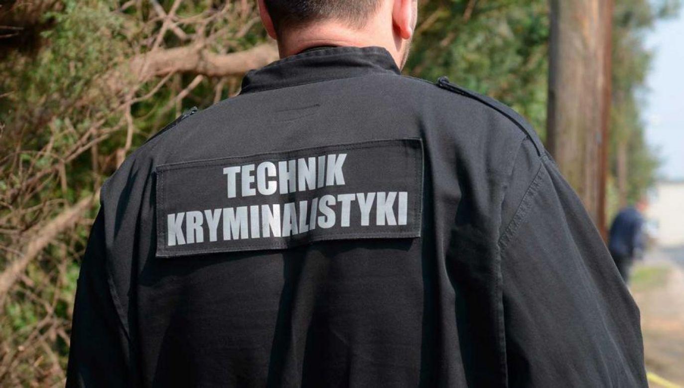 Informację o zdarzeniu otrzymaliśmy na adres:twoje@tvp.info (fot. arch. PAP/Jakub Kaczmarczyk)