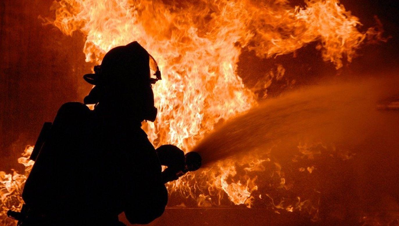 W akcji uczestniczy ok. 120 strażaków  (fot. (fot. Pixabay/Skeeze)