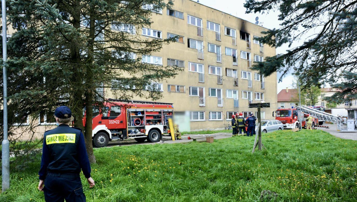 Na miejsce zadysponowano sześć zastępów straży pożarnej (fot. PAP/Marcin Bielecki)