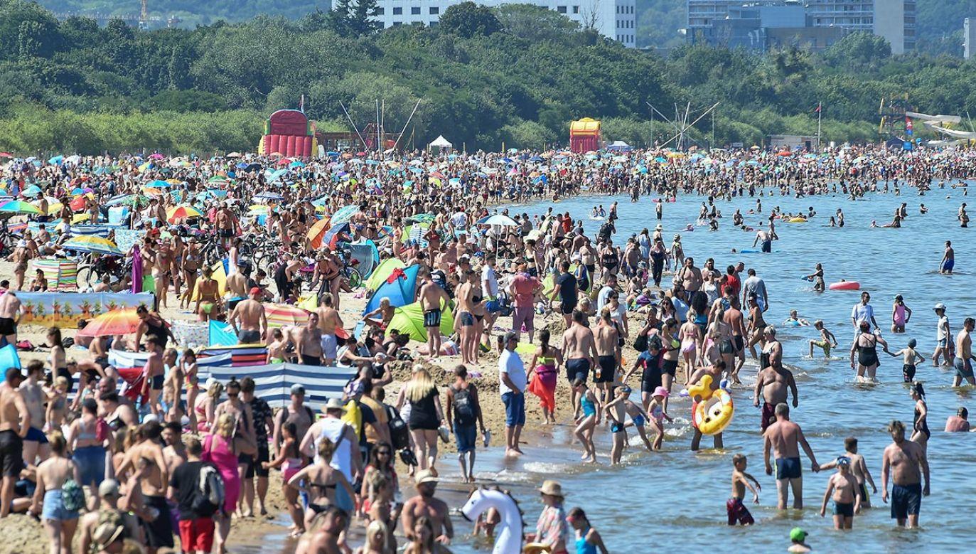 Lato rozpocznie się w tym roku w poniedziałek 21 czerwca (fot. Forum/Lukasz Dejnarowicz)