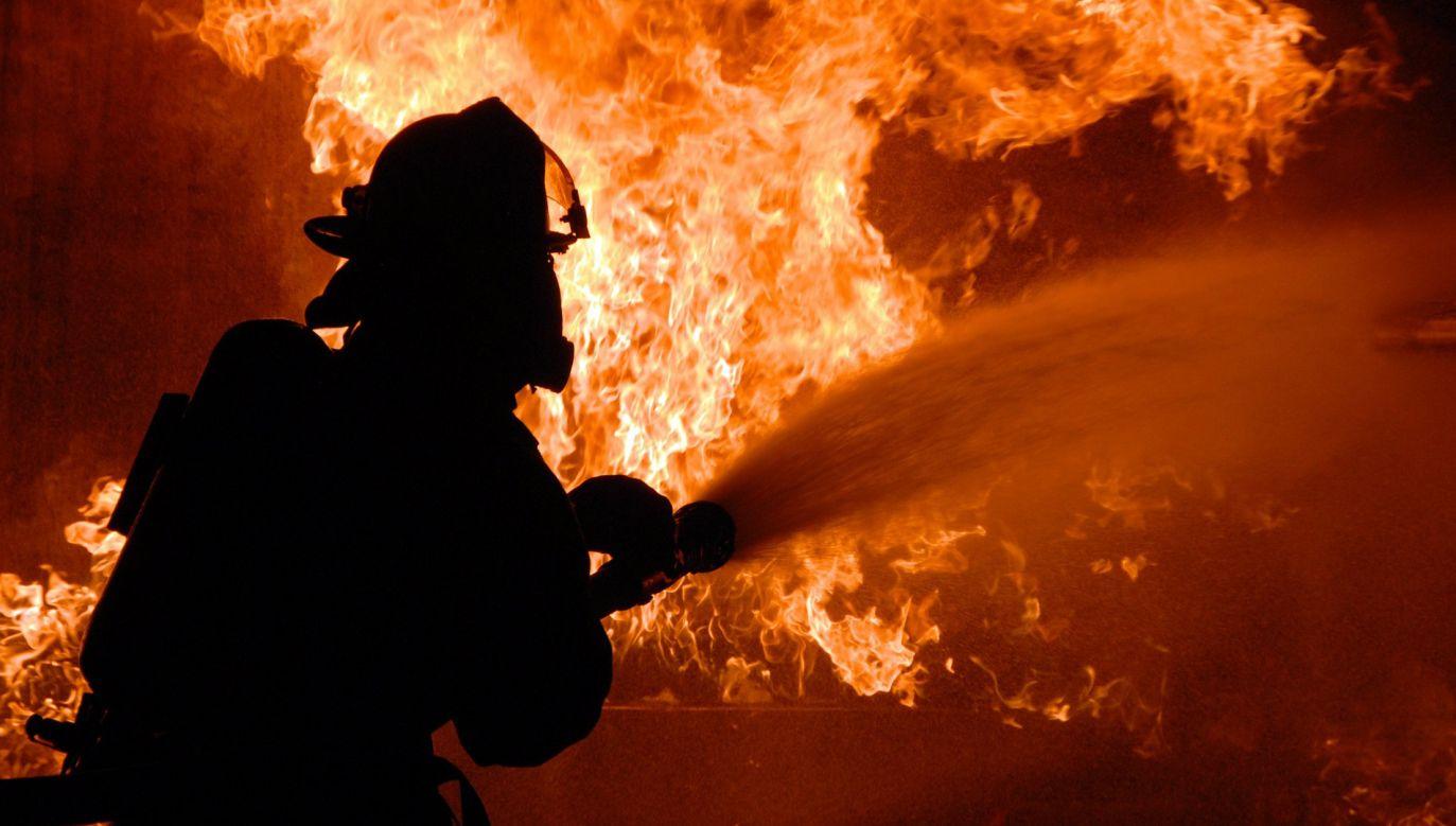 Pożar we francuskim porcie był widoczny z kilku kilometrów (fot. pixabay.com; zdjęcie ilustracyjne)