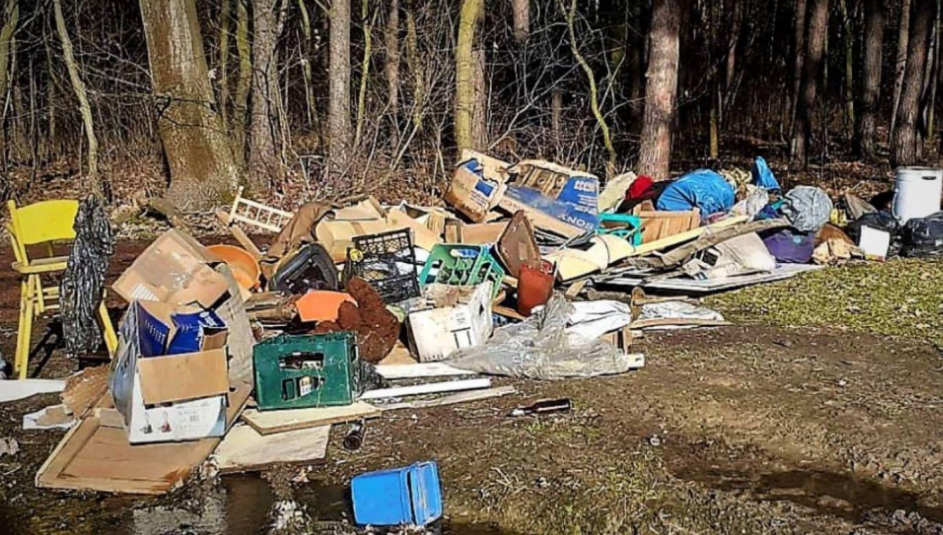 Śmieci zamiast do Punktu Zbiórki Selektywnej Odpadów trafiły do lasu (fot. KPP Wodzisław Śl.)