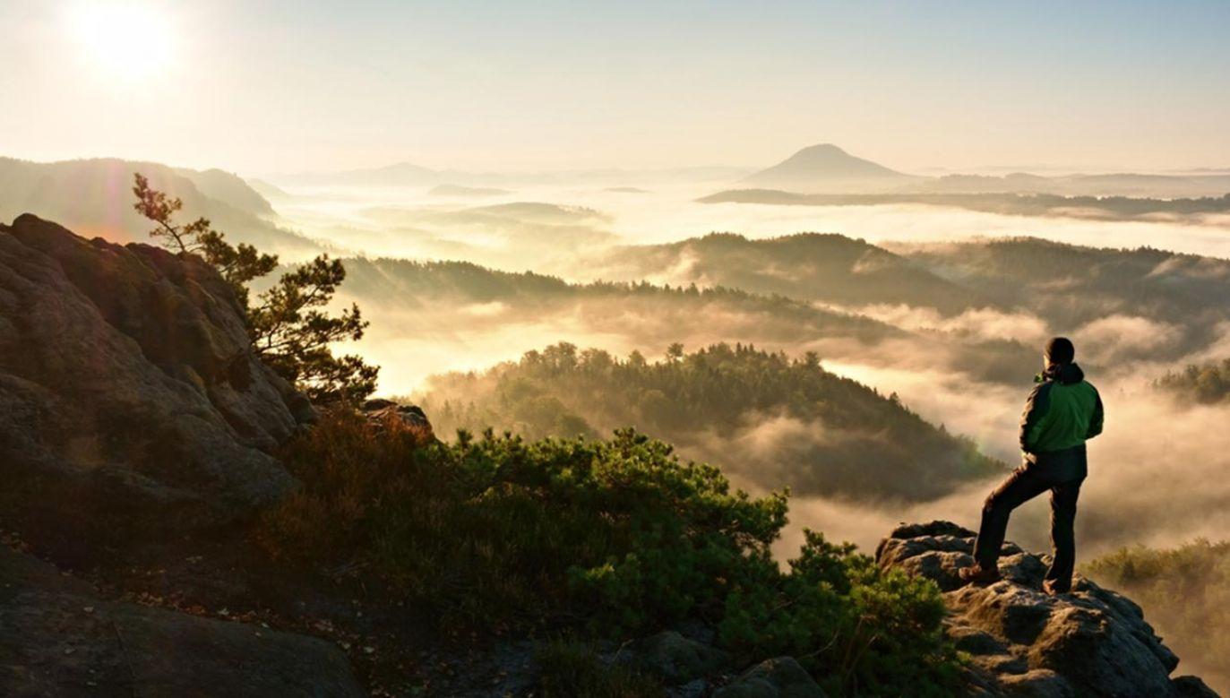Katolicy modlą się w intencji ochrony różnorodności biologicznej (fot.  Shutterstock/rdonar)