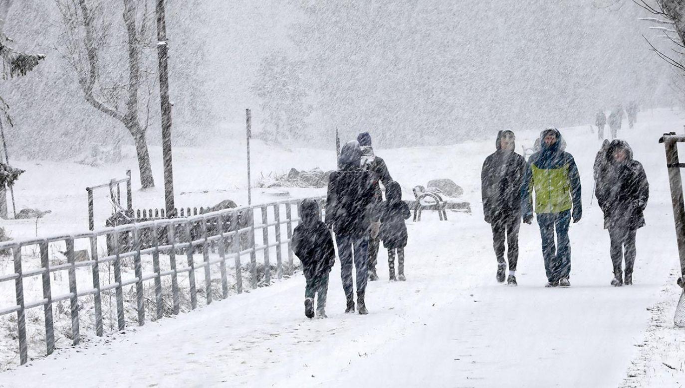 Prognoza – załamanie pogody. Kiedy wróci ocieplenie? (fot. PAP/Grzegorz Momot)