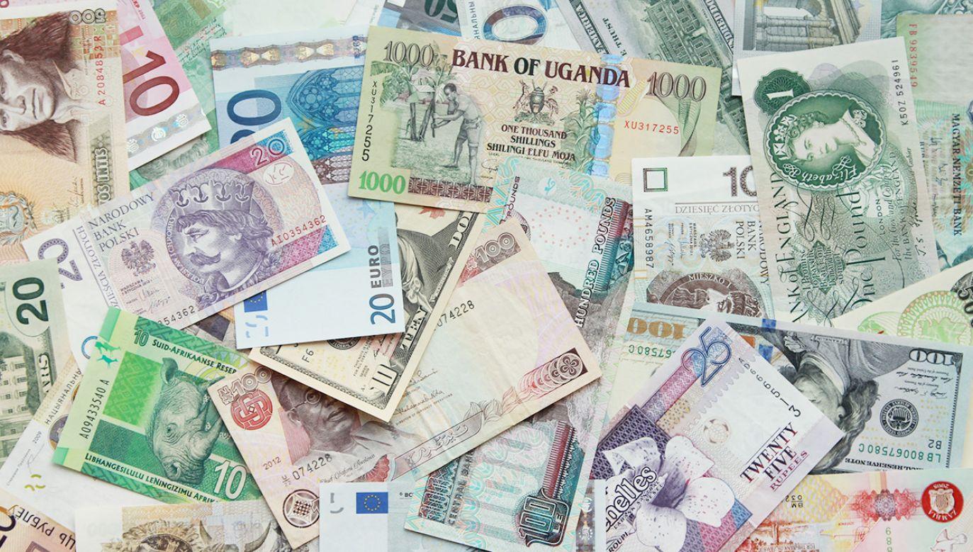 Średnie notowania walut NBP z 12 maja (fot. Shutterstock)