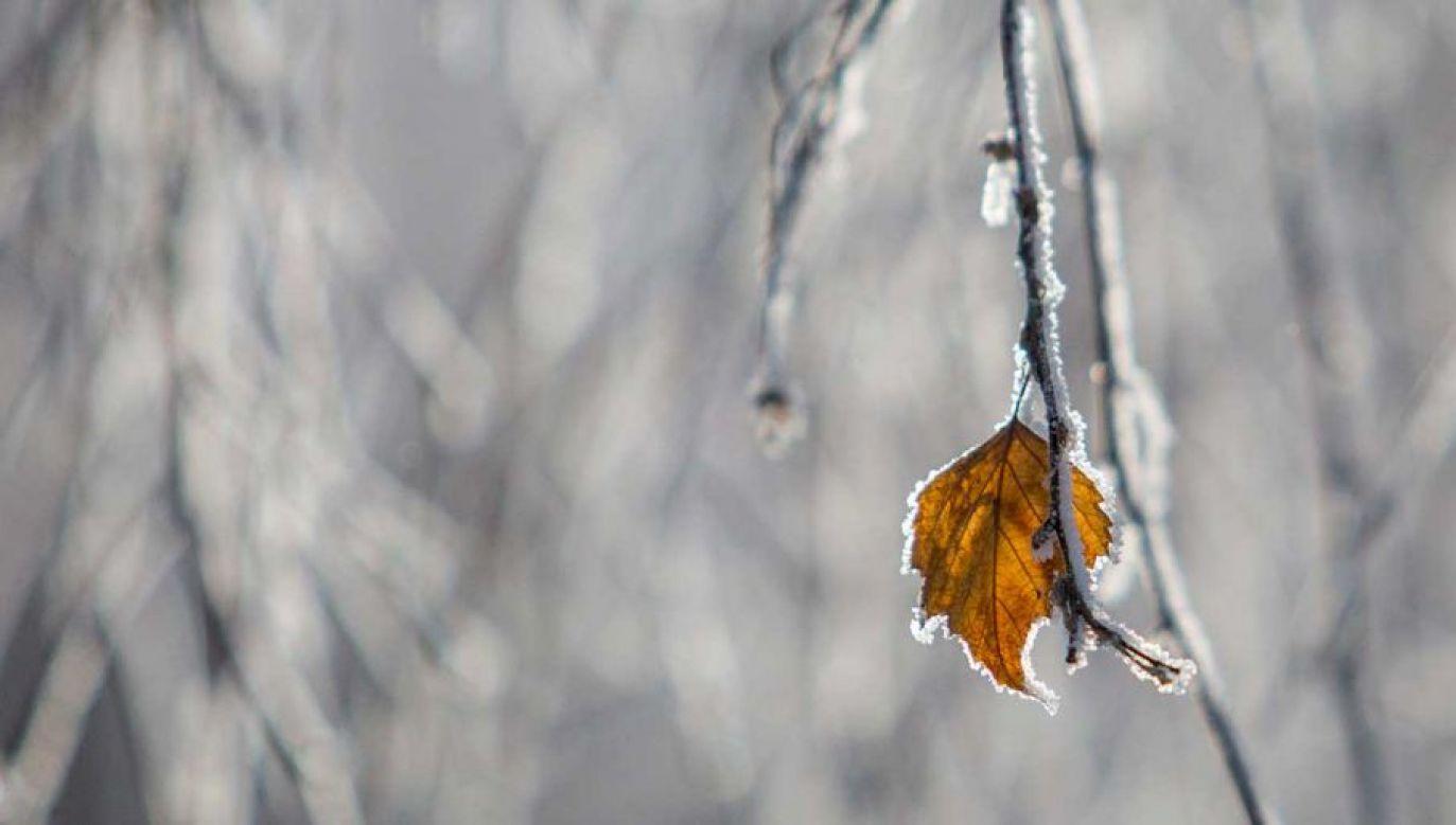 IMGW zaleca ostrożność i śledzenie komunikatów o pogodzie (fot. Dmitry Feoktistov\TASS/Getty Images)