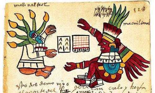 Drzewo kakaowe z Codex Tudela, 1553 r. Znalezione w kolekcji Museo de América w Madrycie. Artysta: sztuka prekolumbijska. Fot. Fine Art Images / Heritage Images / Getty Images