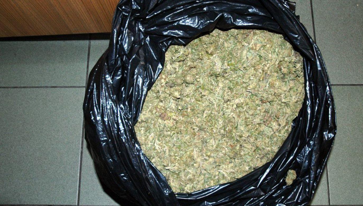 Policjanci przejęli 80 kg narkotyków (fot. cbsp.policja.pl)