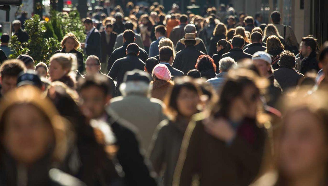 Obecnie na świecie żyje 7,7 miliarda ludzi (fot. Shutterstock/blvdone)