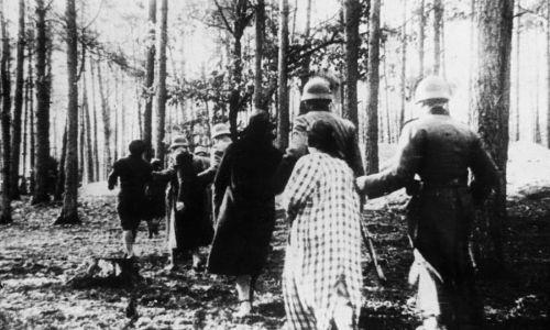 Skazańców prowadzono na skraj grobów. Fot. NAC