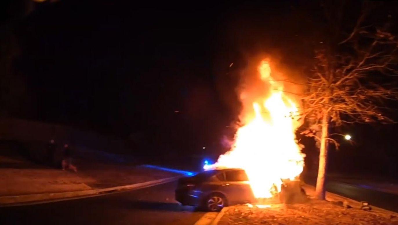 Samochód uderzył w drzewo i zapłonął (fot. EBU/Fayetteville Police)