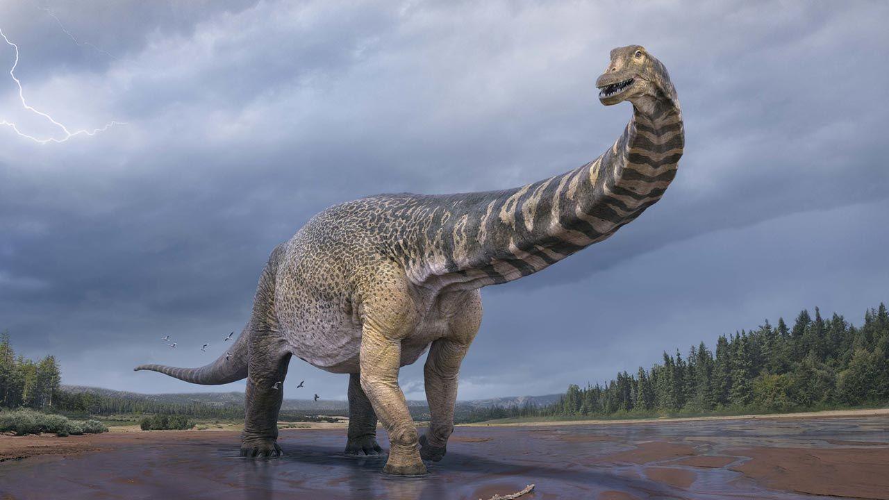 """Największym odkrytym kiedykolwiek dinozaurem jest tzw. """"tytan z Patagonii"""" (fot. Artist Vlad Konstantinov/Eromanga Natural History Museum)"""