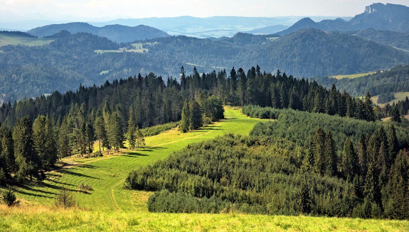 Przyrodnicy zaapelowali natomiast o rozwagę na szlakach wiodących na szczyt najwyższej góry Beskidów (fot. pixabay/JerzyGorecki)