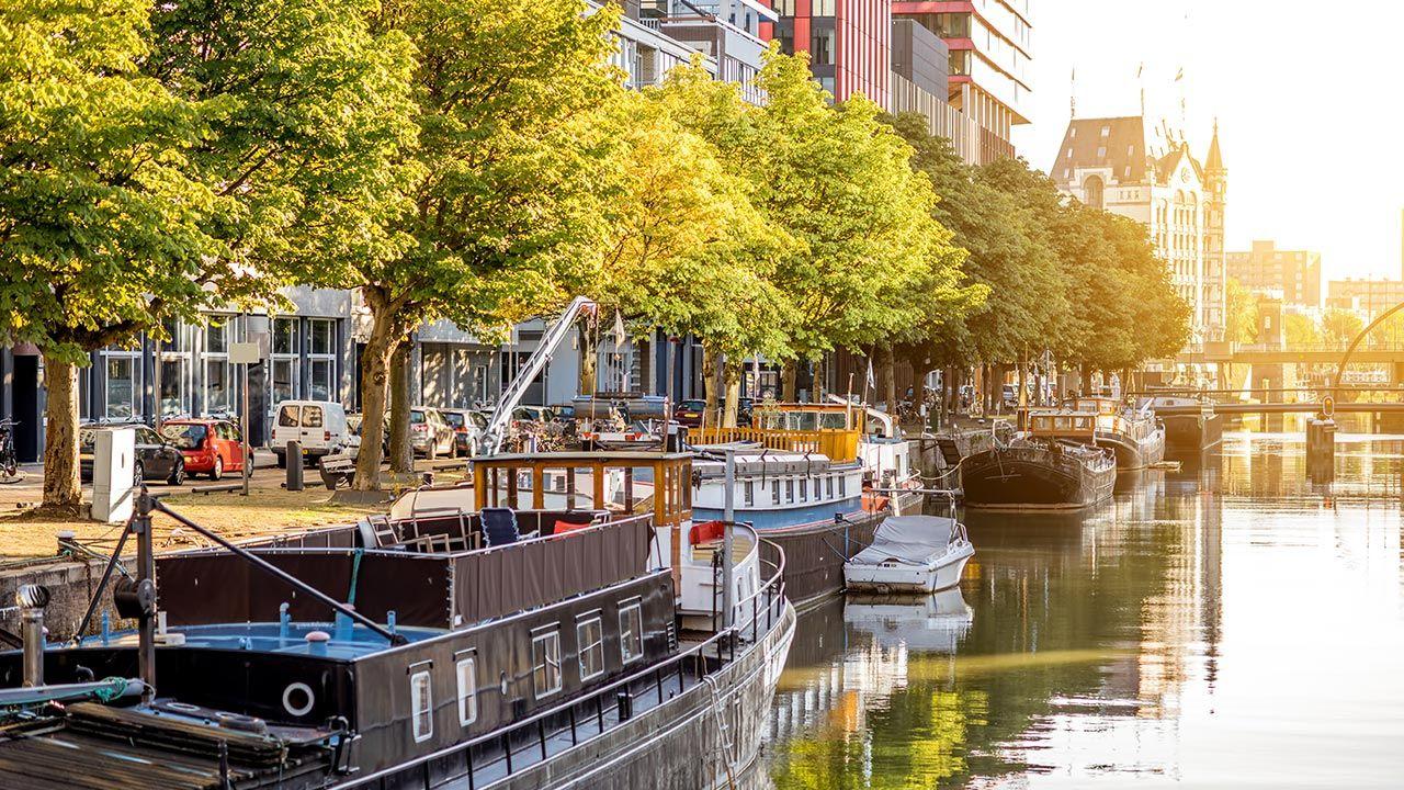 Kontrowersyjna wypowiedź burmistrza Rotterdamu (fot. Shutterstock)