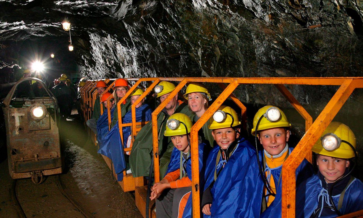 Niemiecko-czeskie pasmo górskie Rudawy (fot. PAP/EPA/FILIP SINGER)