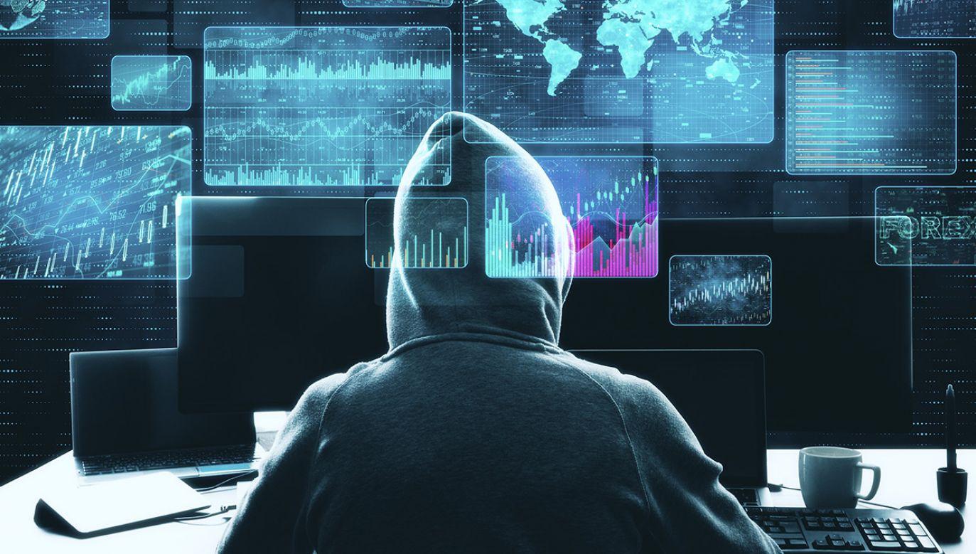 Aktywność cyberprzestępców w Polsce wzrosła o 29 proc. (fot. Shutterstock)