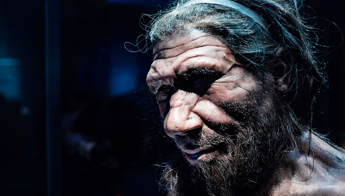 Białko kodowane przez gen odziedziczony po neandertalczykach może chronić przed ciężkim przebiegiem choroby (fot. Shutterstock/Chettaprin.P)