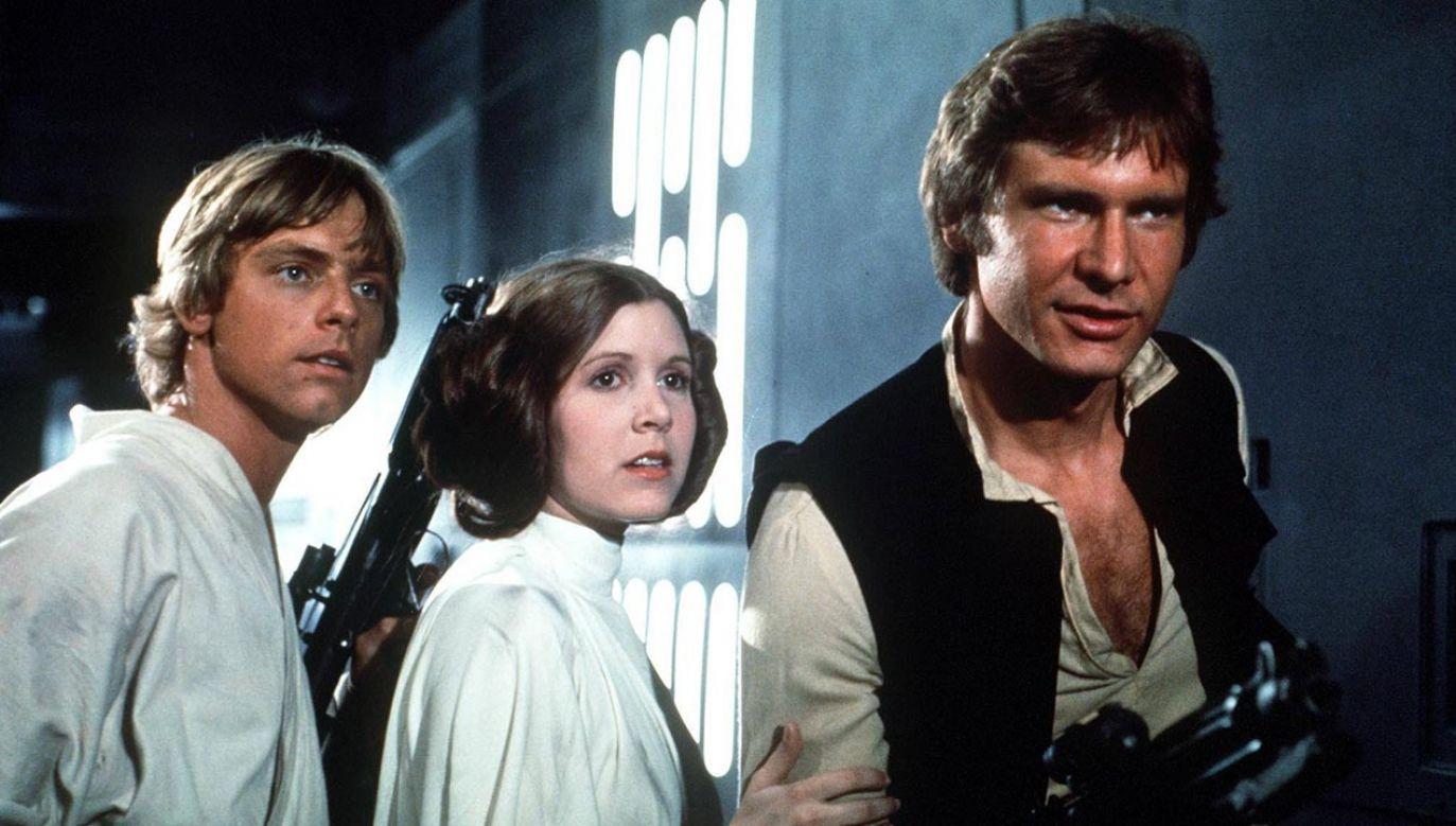 """""""To był pomysł Harrisona"""" (fot. PAP/Photoshot)"""