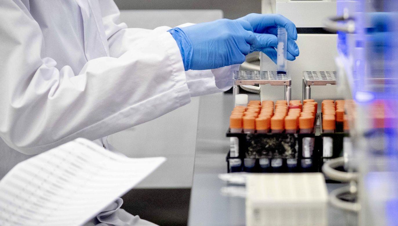 Polska może niebawem produkować własne testy na koronawirusa (fot. PAP/EPA/SEM VAN DER WAL, zdjęcie ilustracyjne)