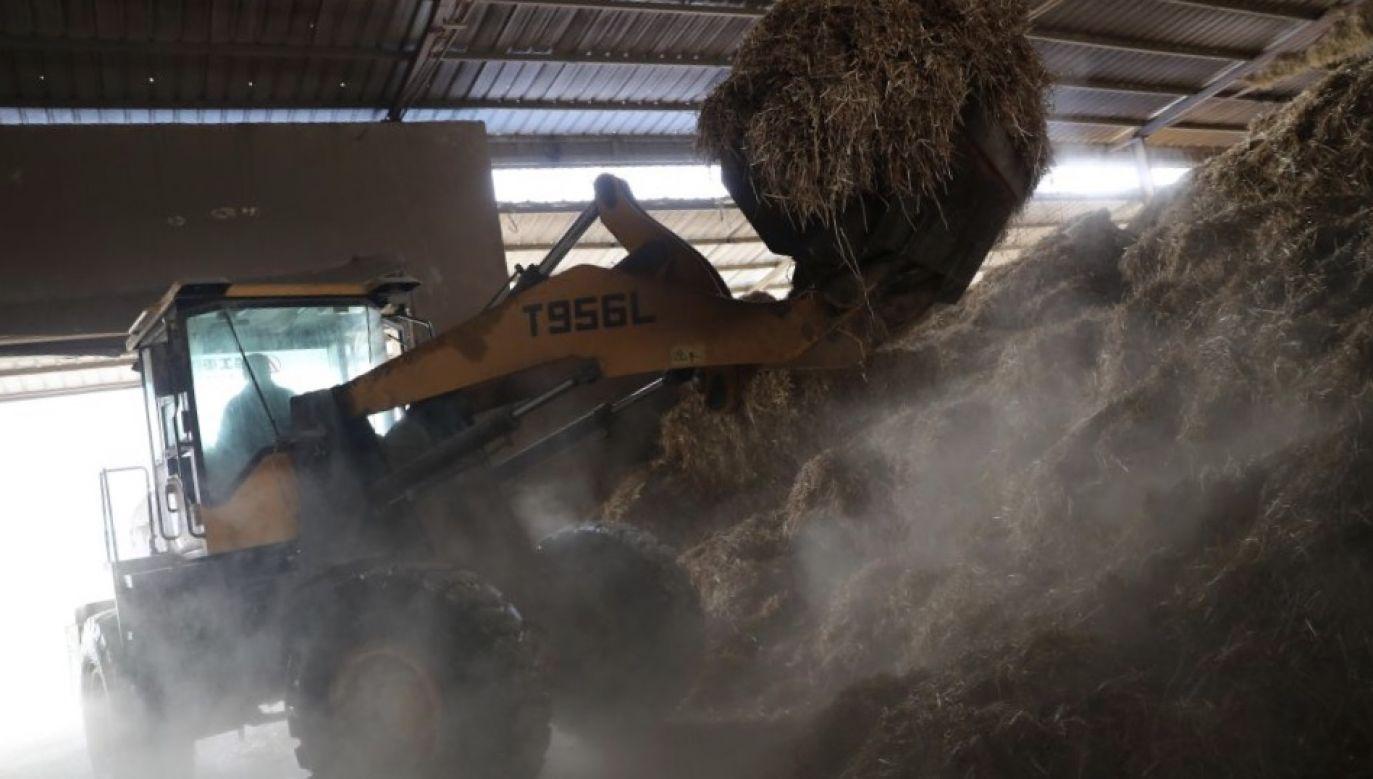 Kilkutonowa maszyna śmiertelnie przygniotła małe dziecko (fot. Getty Images, zdjęcie ilustracyjne)