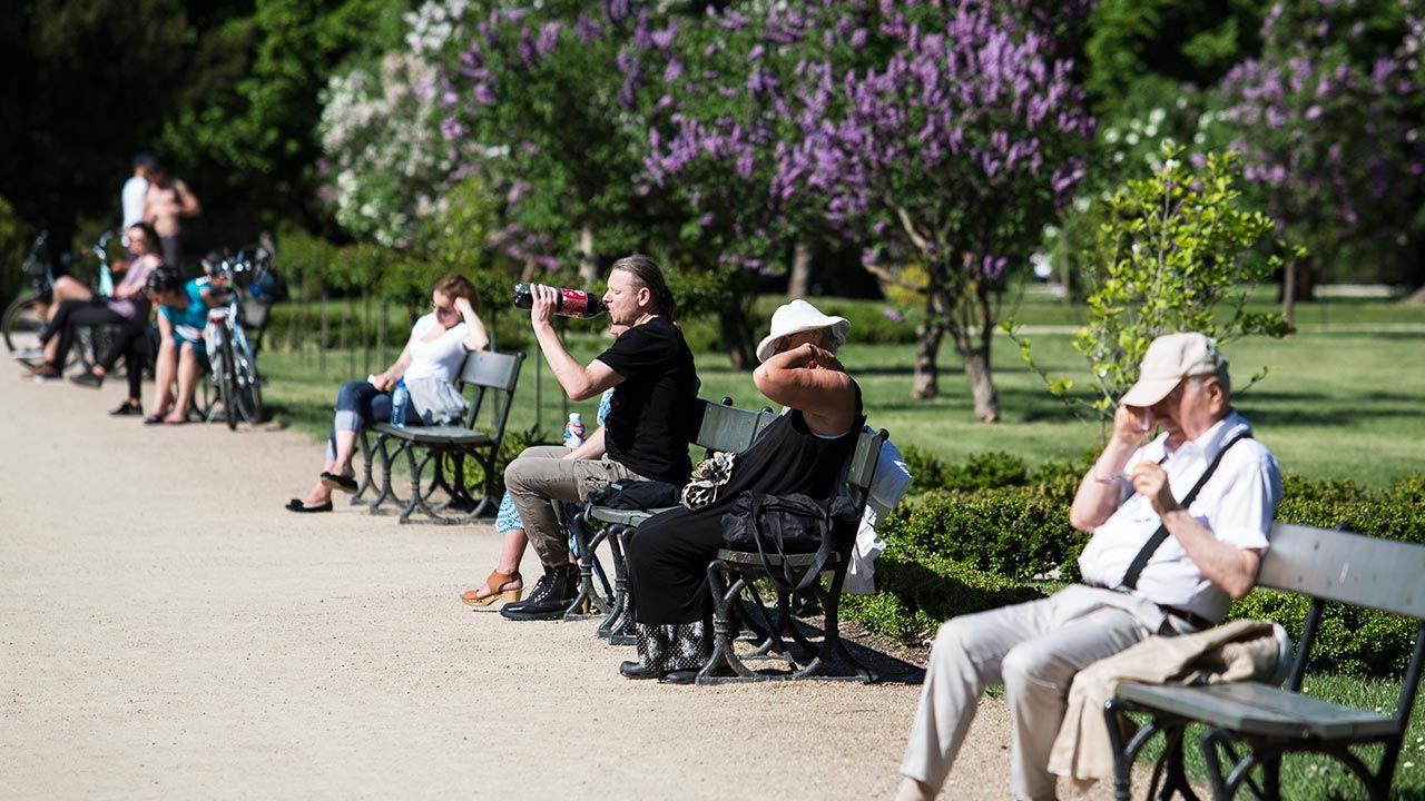 Zapowiada się ciepła, lecz nie upalna majówka (fot. Forum/ Andrzej Hulimka)