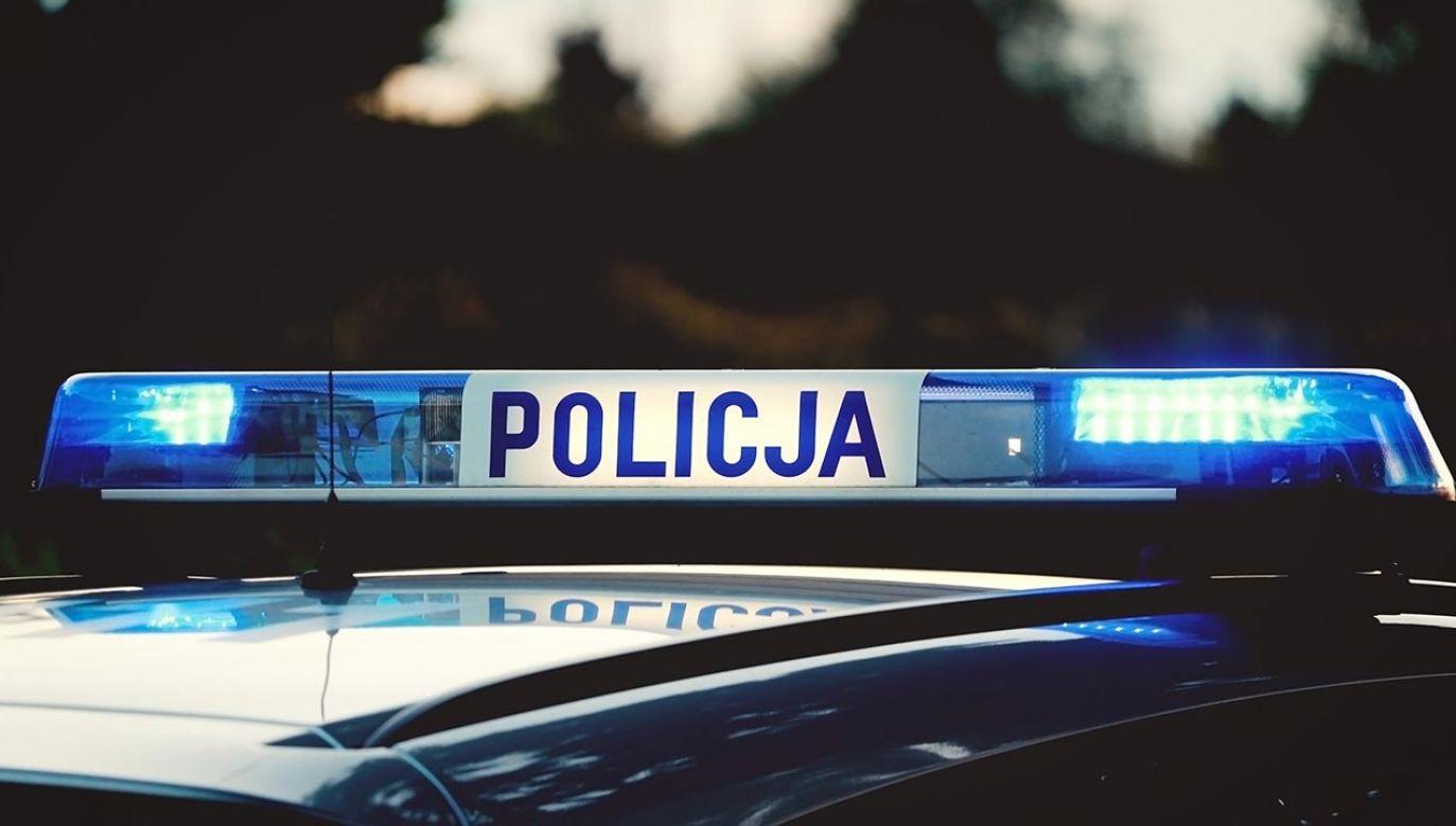 Mężczyzna w przeszłości był już notowany za podobne przestępstwa (fot.shutterstock/canon_photographer)