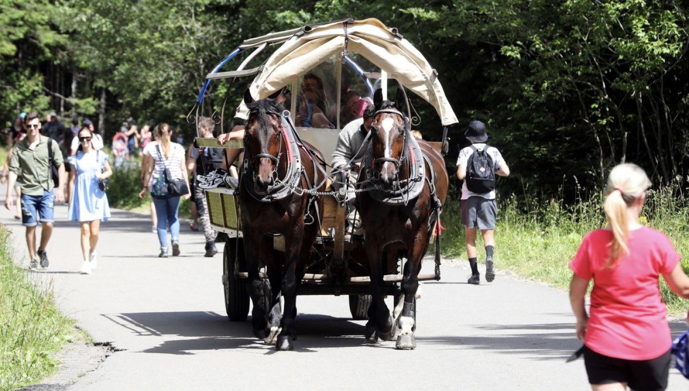 Najwięcej turystów wybiera się nad Morskie Oko (fot. PAP/Grzegorz Momot)