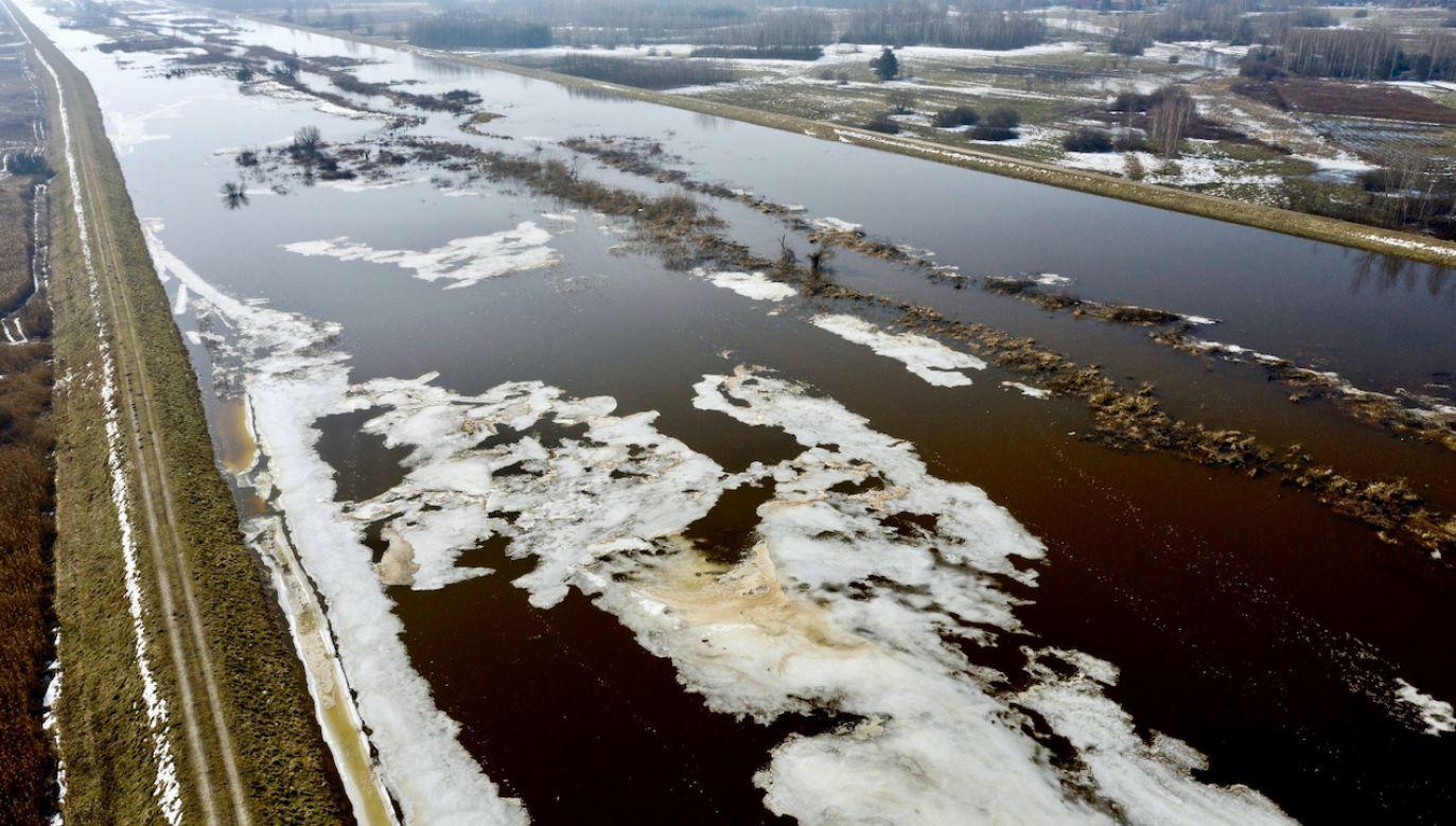 Rozlana po okolicy i sięgającą wałów przeciwpowodziowych rzeka Łęg w okolicy Grębowa (fot. PAP/Darek Delmanowicz)