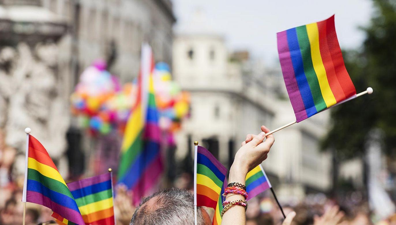 """""""Obok od powodów, które daje homofobiczna retoryka władz, przedstawiciele innych państw uważają, że można Polskę besztać bez żadnych, negatywnych dla siebie konsekwencji"""" – podkreślił polityk (fot. Shutterstock/Ink Drop)"""