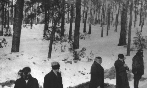 Rozstrzeliwano z broni maszynowej. To zdjęcie z egzekucji w Palmirach zostało uzyskane jeszcze w czasie wojny przez wywiad Armii Krajowej. Fot. Wikimedia
