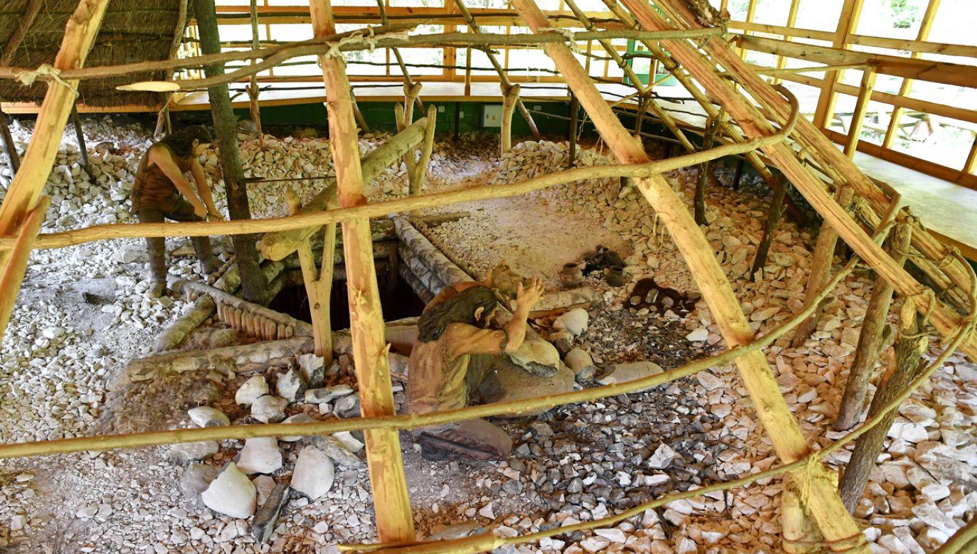 Kilka tysięcy lat temu były tu osiedla górnicze, szyby, chodniki i komory kopalniane (fot. PAP/Piotr Polak)