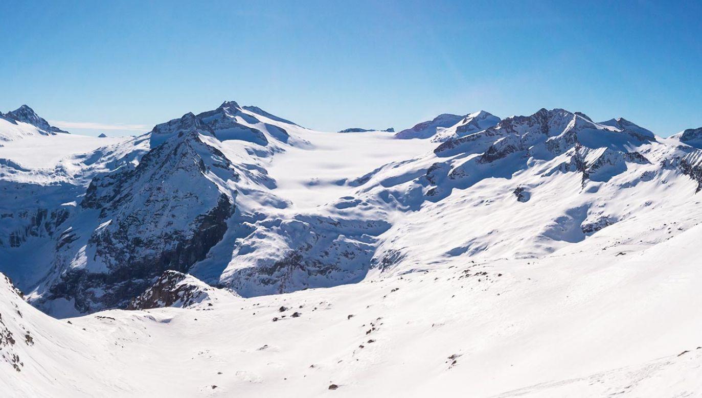 Prawdopodobnie za kolor lodowca odpowiedzialne są glony (fot.  Shutterstock/MC MEDIASTUDIO)