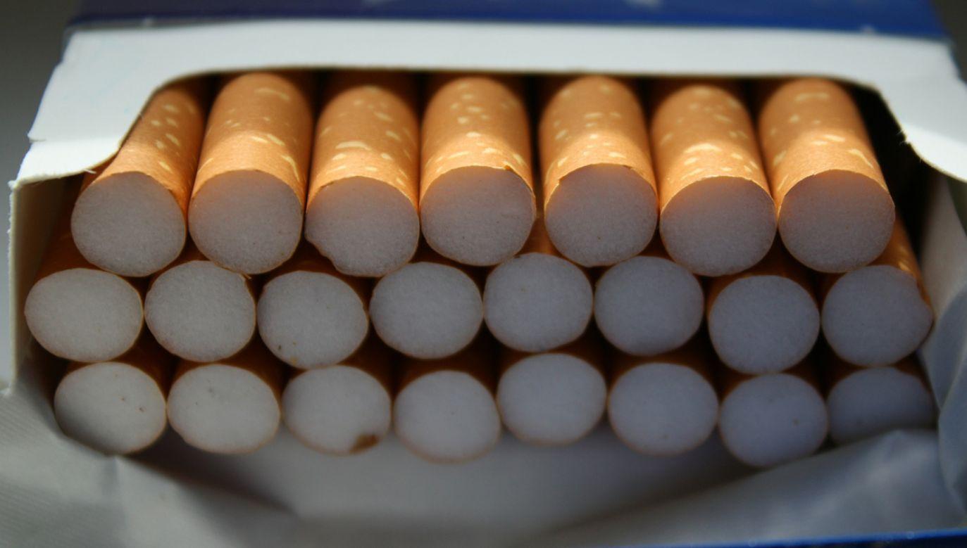 Akcyza na papierosy ma wzrosnąć o 10 proc.  (fot. Pixabay/geralt)