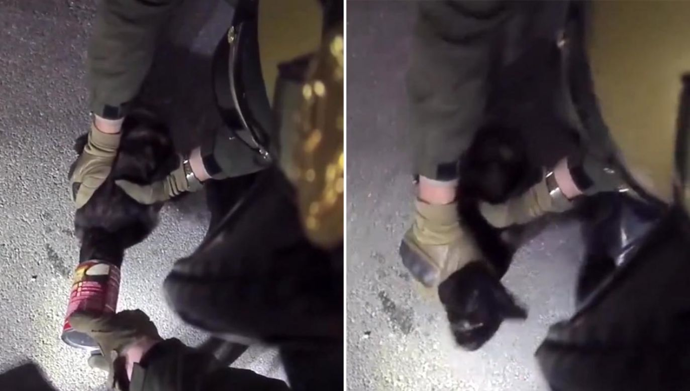 Policjanci wyciągnęli kota z puszki (fot. Las Vegas Metropolitan Police Department)