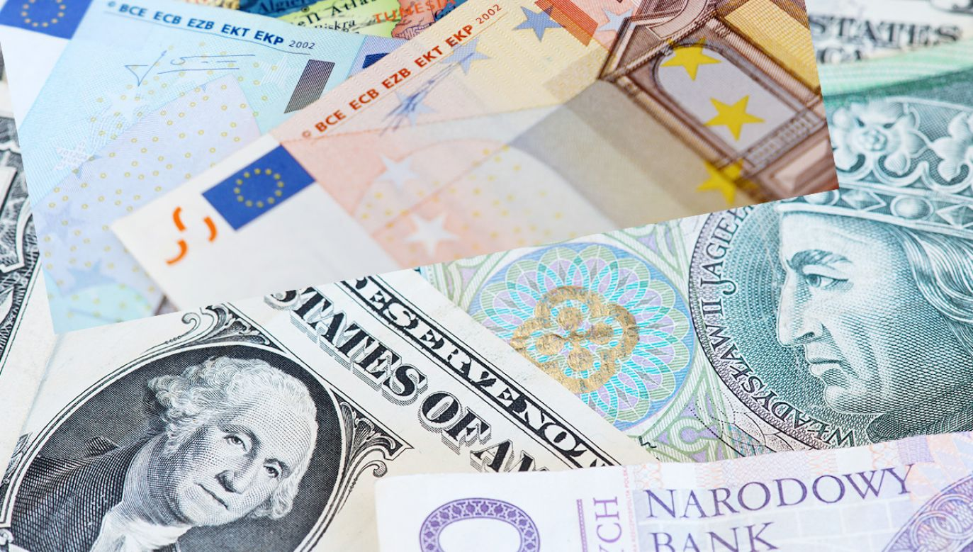 Kursy walut NBP (fot. Shutterstock)