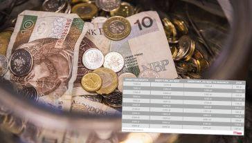 Ile emeryci i renciści zyskają na Polskim Ładzie? (fot. Shutterstock/Viktor Osipenko