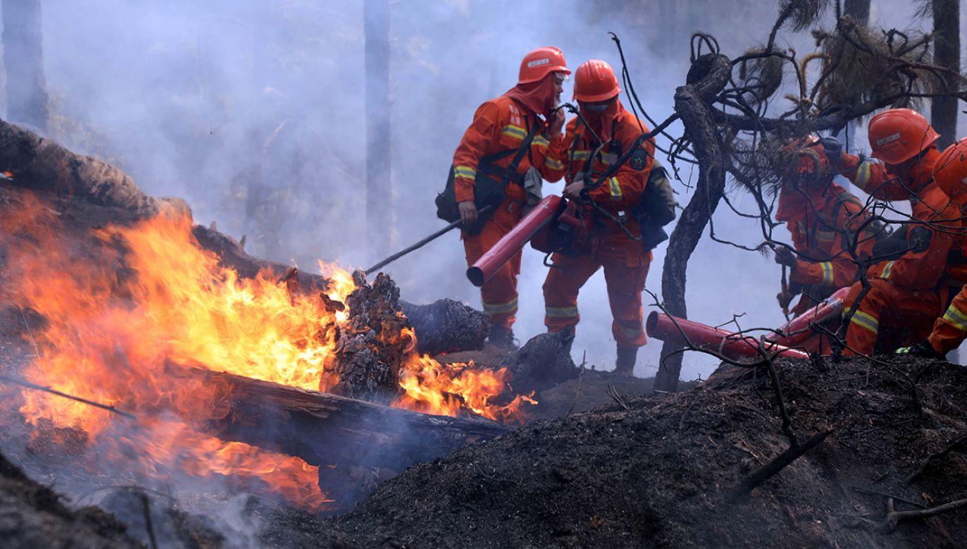 Kilkunastu strażaków zginęło podczas walki z pożarem lasu (fot. China Daily via REUTERS)