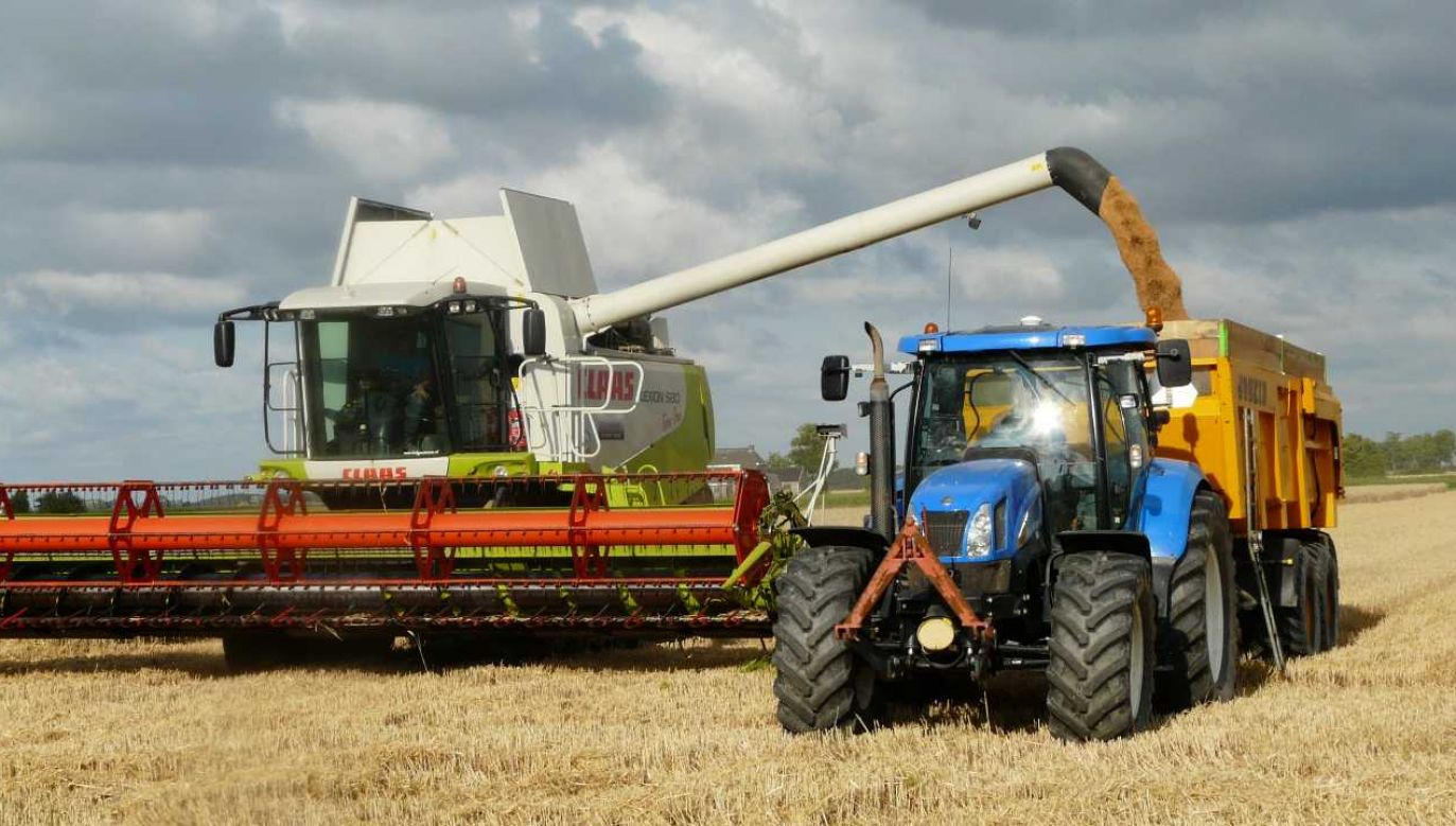 Ostatnie opady deszczu bardzo pomogły rolnikom (fot. Pexels)
