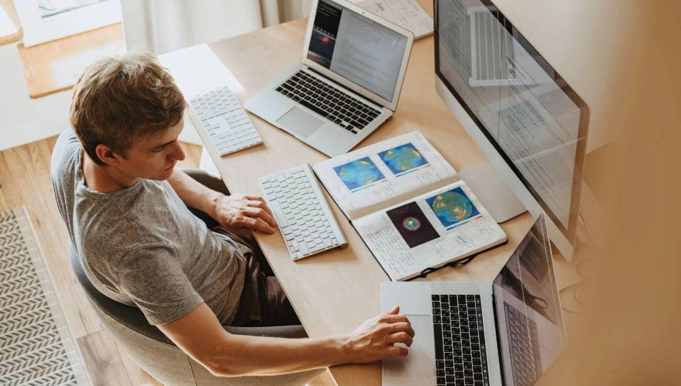 Zajęcia będą odbywać się online (fot. Pexels)