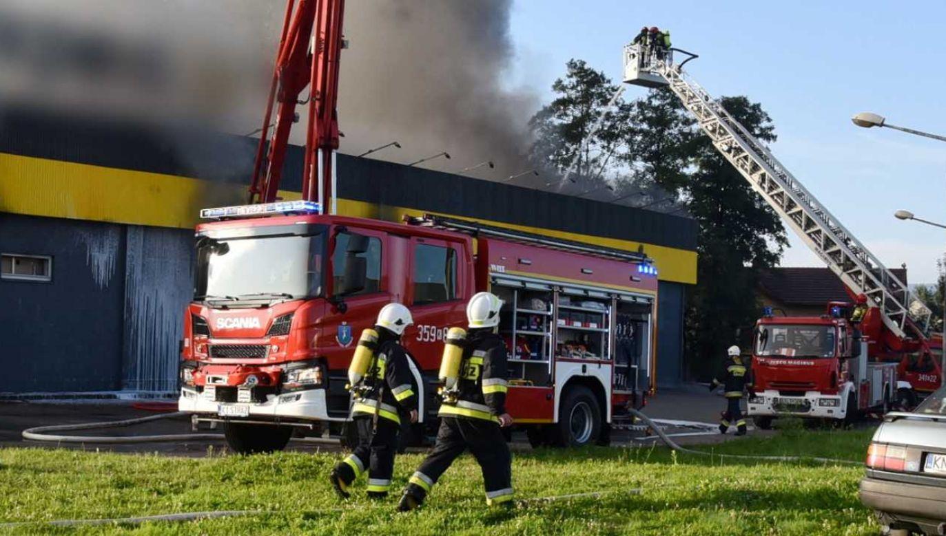 Strażacy opanowali sytuację (fot. PAP/Grzegorz Momot)