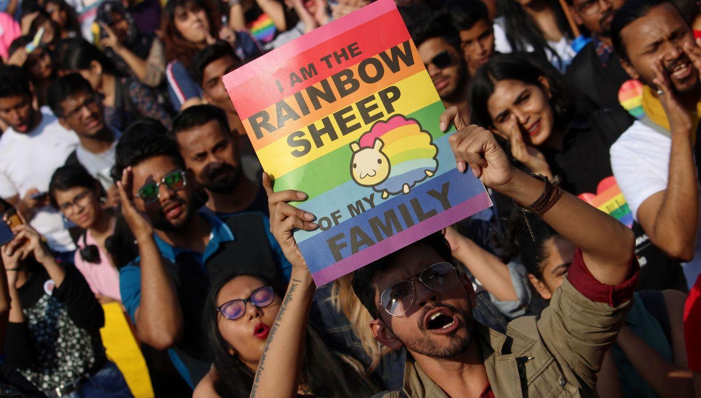 """Jedynymi znanymi powszechnie gatunkami, co do których nauka twierdzi, że wykazują preferencje homoseksualne przez całe życie, są ludzie i… udomowione owce. 8 proc. samców """"kocha inaczej"""". Uczestnik Marszu Równości w Mumbaju w Indiach trzyma transparent z napisem """"Jestem tęczową owcą mojej rodziny"""", 1 lutego 2020 r.  Fot. Himanshu Bhatt / NurPhoto via Getty Images"""