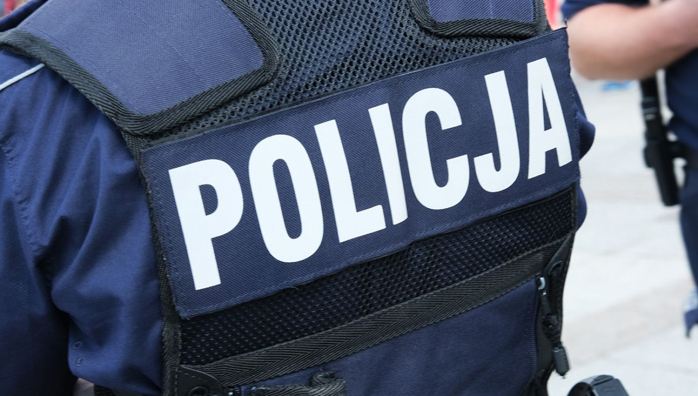 Dwóch policjantów odpowie za pobicie Czecha, który nie chciał przyjąć mandatu (fot.  Shuterstock/forma82)