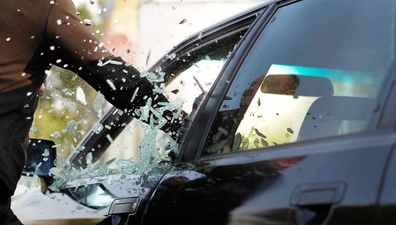 Mężczyzna trafił do aresztu (fot. Shutterstock/Gina Buliga)