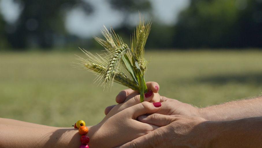 Serwisy randkowe, takie jak tylko rolnicy